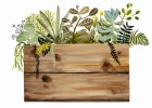 Watercolor painting- print- Crate and Plants Print, botanical, wood, succulents