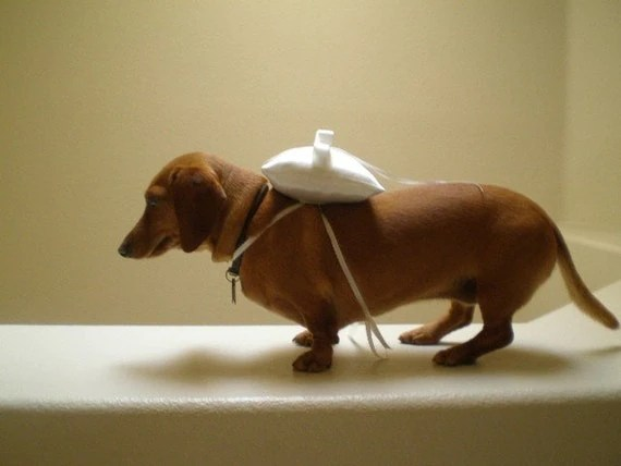 The CLASSIC Ring Bearer Pillow for DOGS in WHITE or by