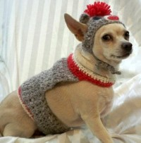 Dog Halloween Costume Gray Sock Monkey gray Alpaca yarn
