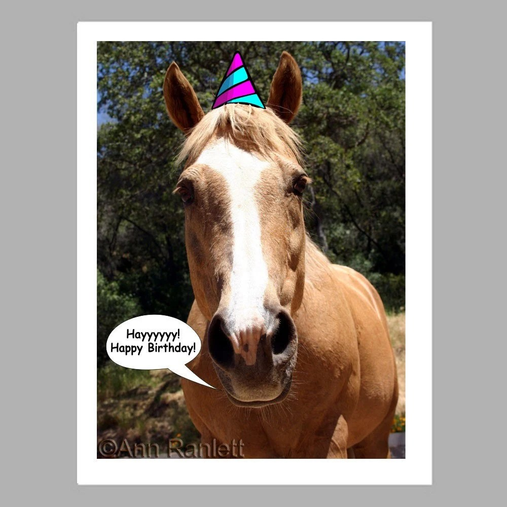 Items Similar To Birthday Card Party Horse Photo 5