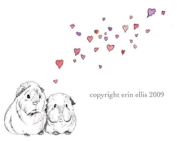 Guinea Pig 5x7 Print by erinaellis on Etsy