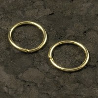 Small Gold Hoops / Tiny Gold Hoop Earrings / Small Cartilage