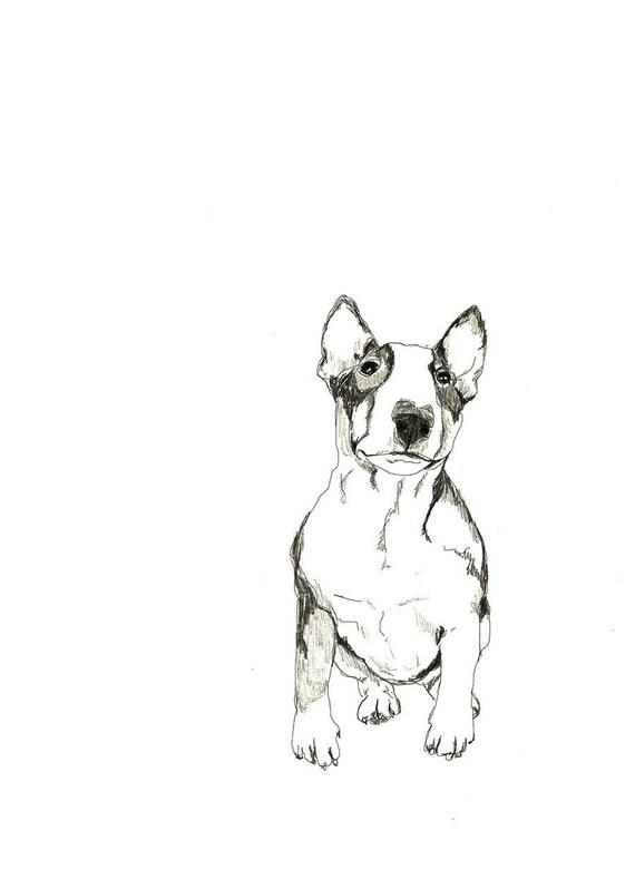 Bull Terrier Print of Original Drawing Dog Art