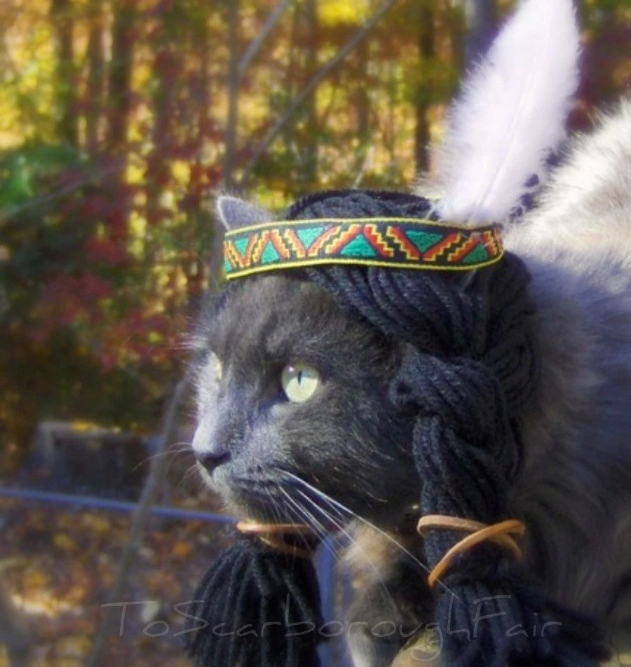 Cat Costume Indian Headdress