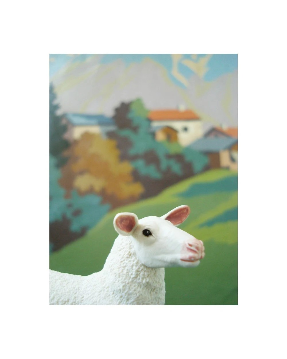 ewe with paint by number background print