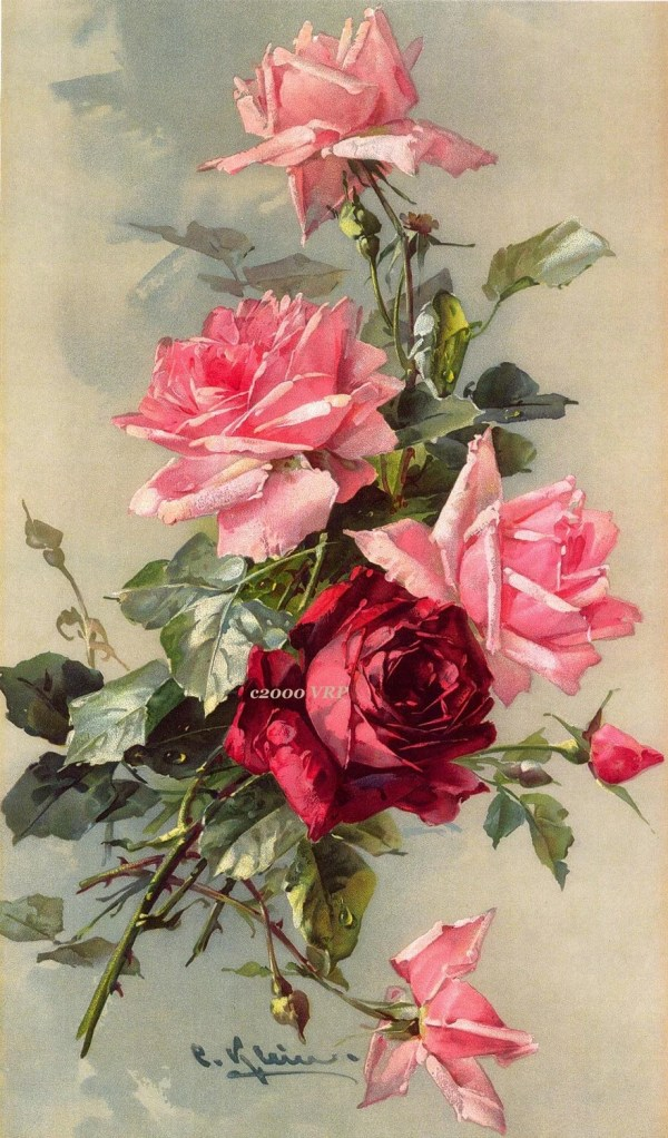 Print Free Ship French Victorian Roses Delights . Klein
