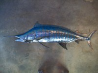 Blue Marlin Metal Fish Wall sculpture Beach Coastal Tropical