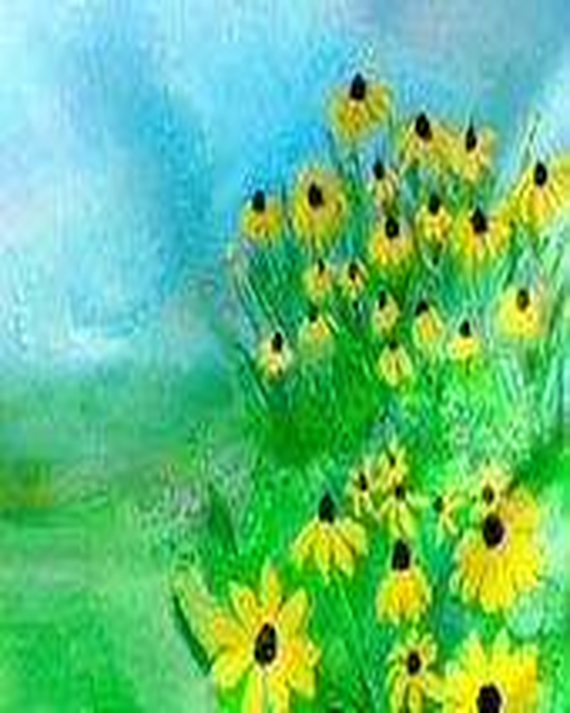 Yellow Flower Art Print Nature Landscape Black Eyed Susan Garden - artbytrudy