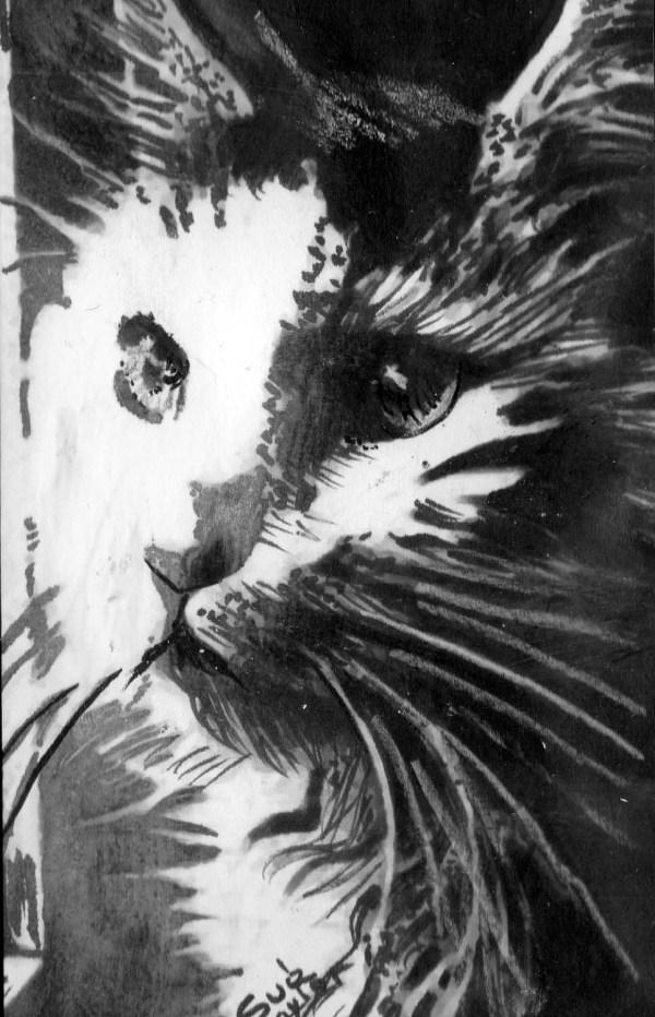 Original Art Drawing Pen And Ink Cat Face
