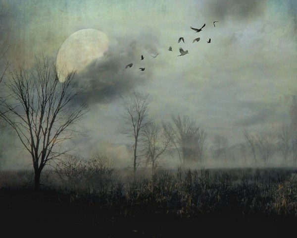Surreal Landscape Full Moon Birds Gothic Dark Grey