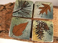 Backsplash Accent Ceramic Tile kitchen bath tree leaves