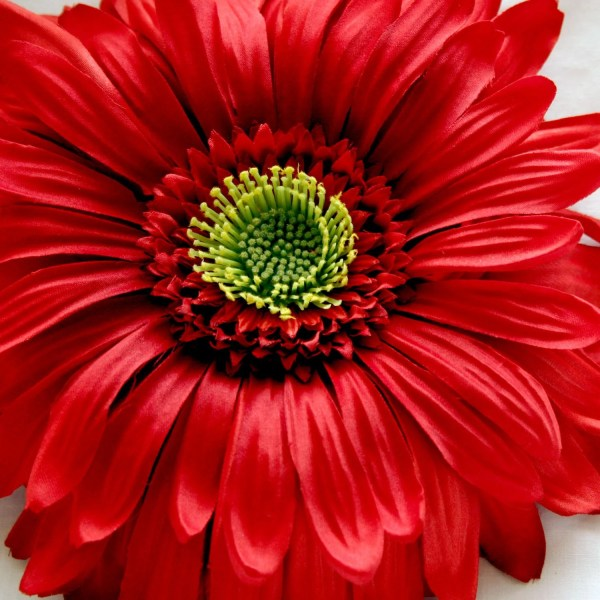 Artificial Flowers Silk 1 Giant Red Daisy