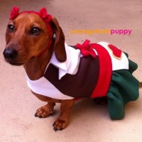 Heidi Oktoberfest Lederhosen Costume for Dogs by ...