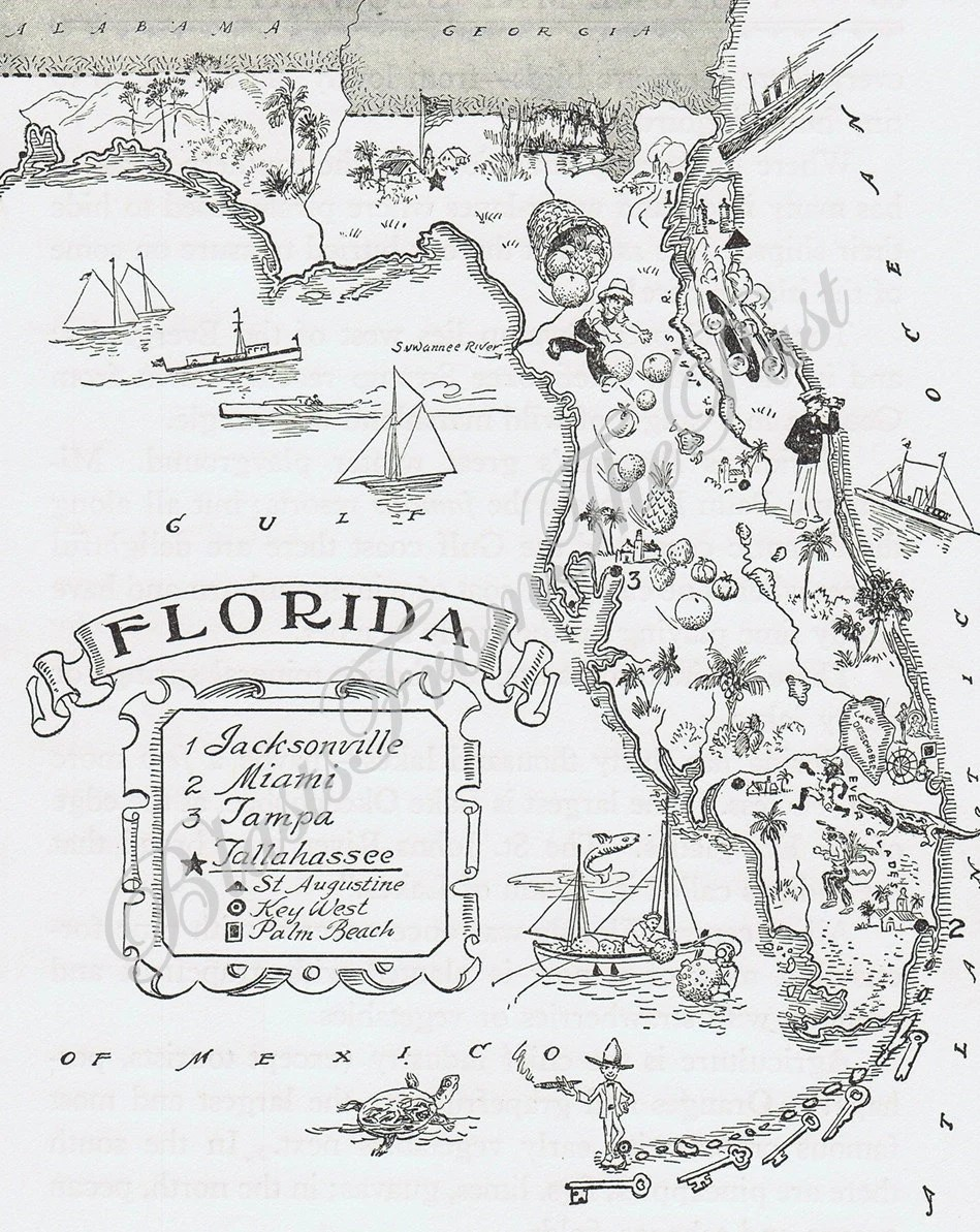 MAP of FLORIDA Vintage Perfect for Framing by