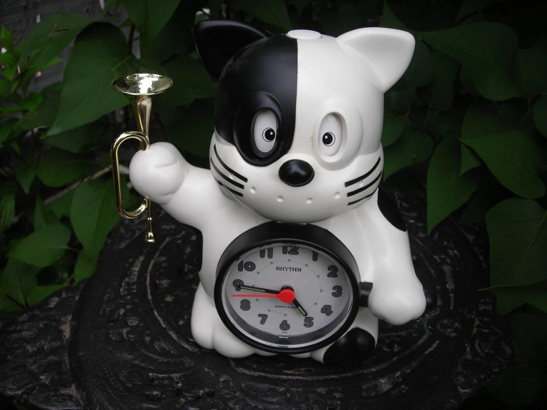 Alarm Shine Rise And Clock
