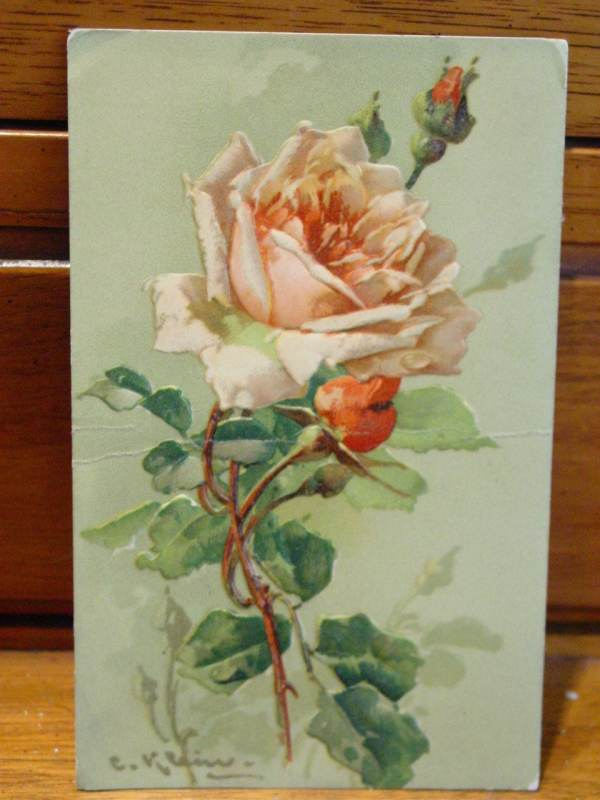 Antique Postcard Peach Roses Artist Catherine Klein