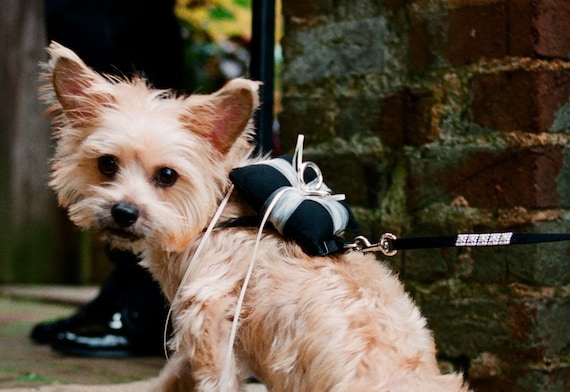 Items similar to Dog Ring Bearer Wedding Pillow on Etsy