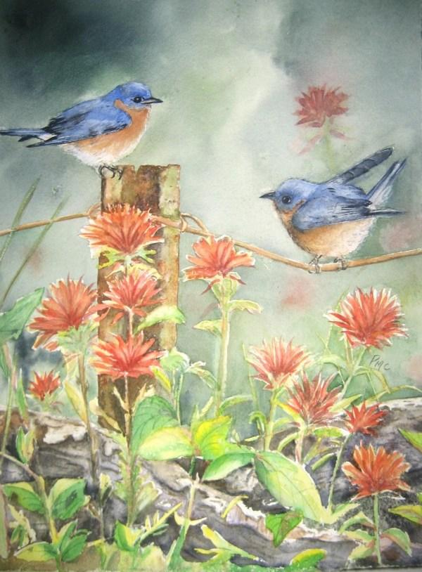 Bluebird And Indian Paintbrushprint Of Watercolor Prints