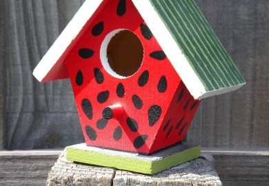 Ideas For Painting Birdhouses