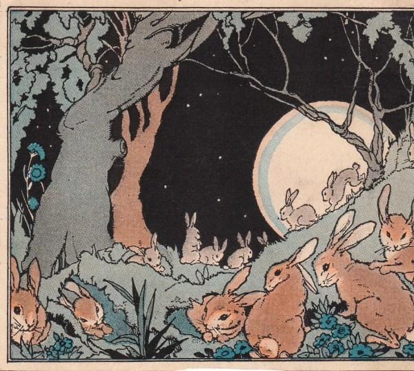 Rabbits 1920s Children' Book Illustrations Set Of 5