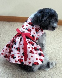 CLEARANCE DOG CLOTHES Dog Harness Dress