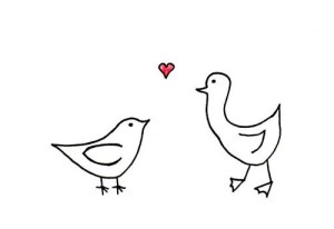 birds drawing valentine drawings heart