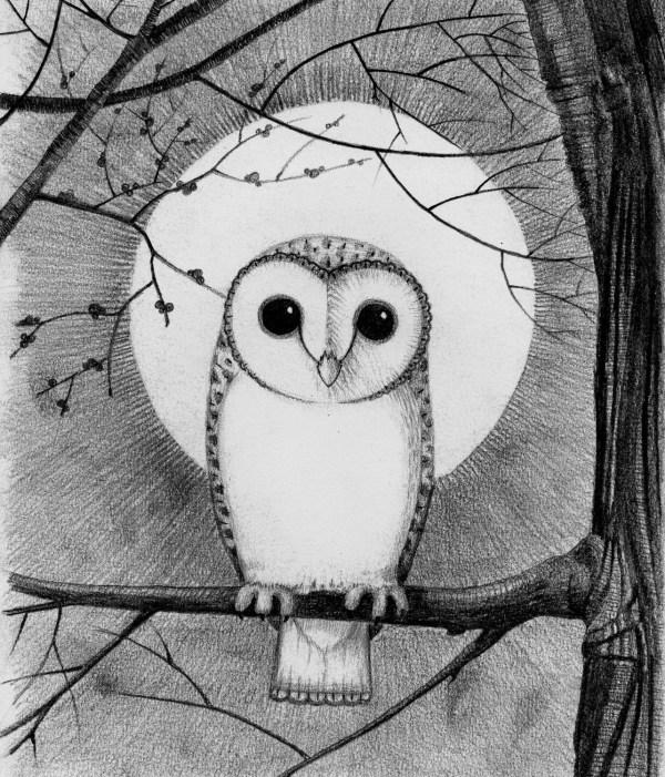 Barn Owl Moon Giclee Print A4