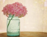 Pink Hydrangea Fine Art Photography Shabby Chic Romantic