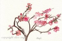 Original Watercolor Japanese Blossom Branch Painting 4x6