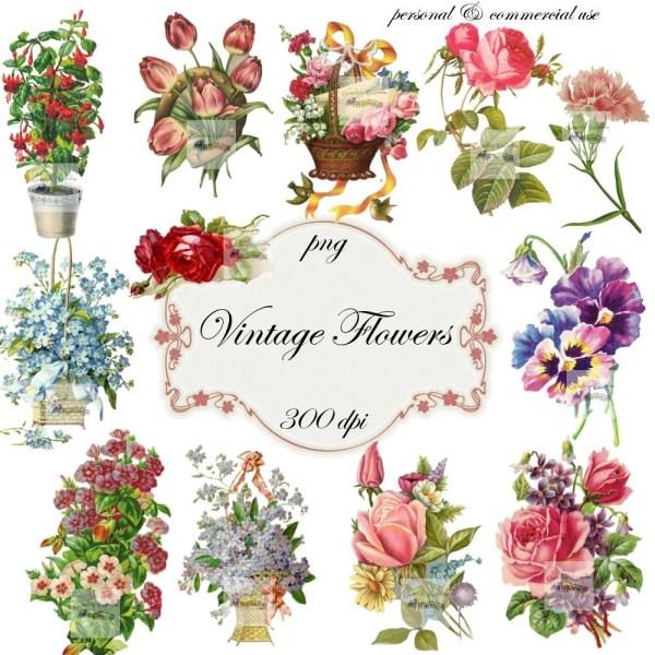 clip art flowers vintage digital