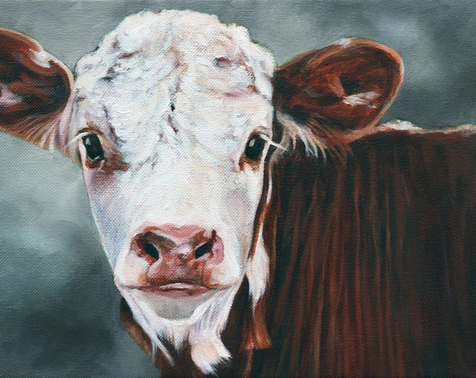 Original Art Calf Print Cow Print Fine Art Print by cmqstudio