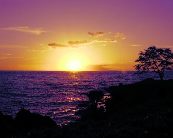 items similar purple sunset