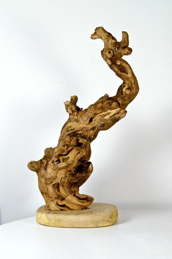 Driftwood Sculpture Mother Nature Creation Wounded Bird