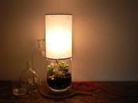 Terrarium/ Display Column Table Lamp