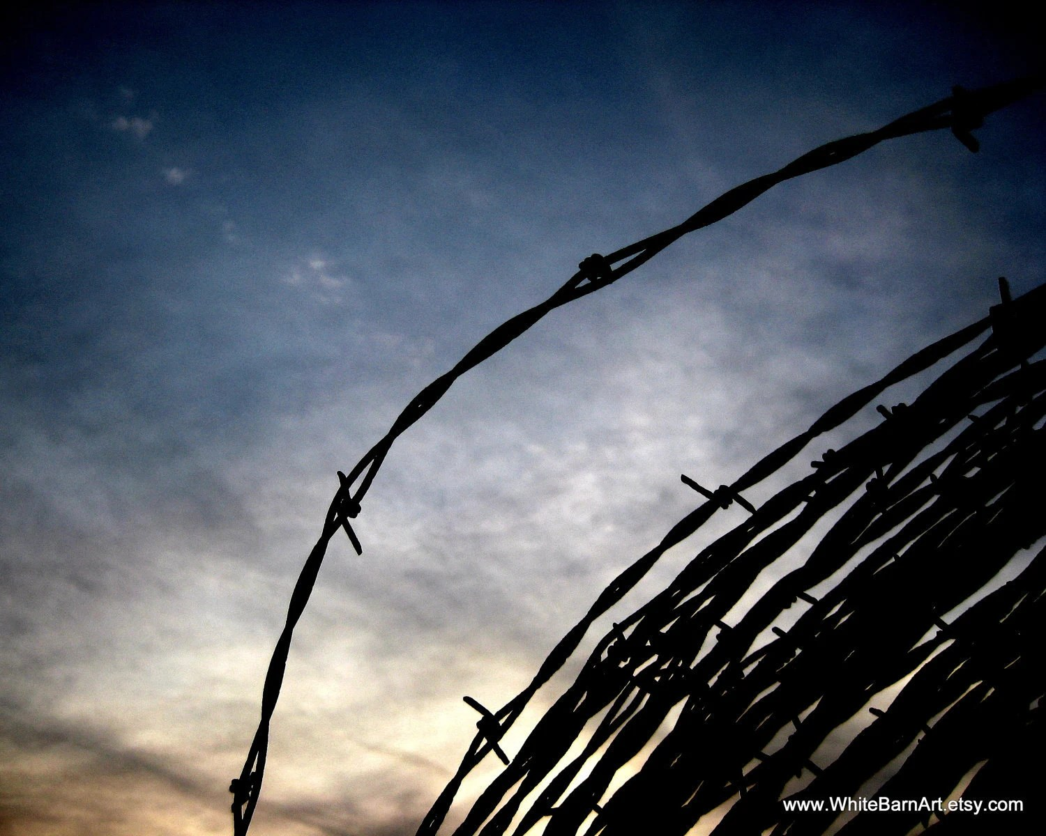 Barbed Wire Study 5  - 16 x 20 Fine Art Photography -  Blue Orange Sunset Rustic Industrial Decor - FREE SHIPPING - TAGT Team - WhiteBarnArt