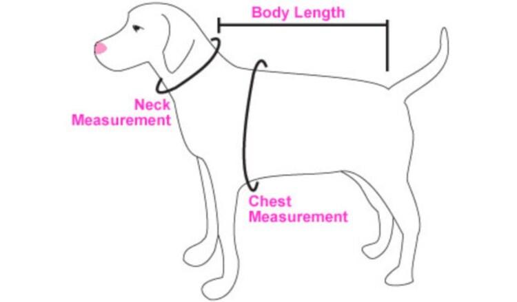 Denim striped fur coat dog harness Size by