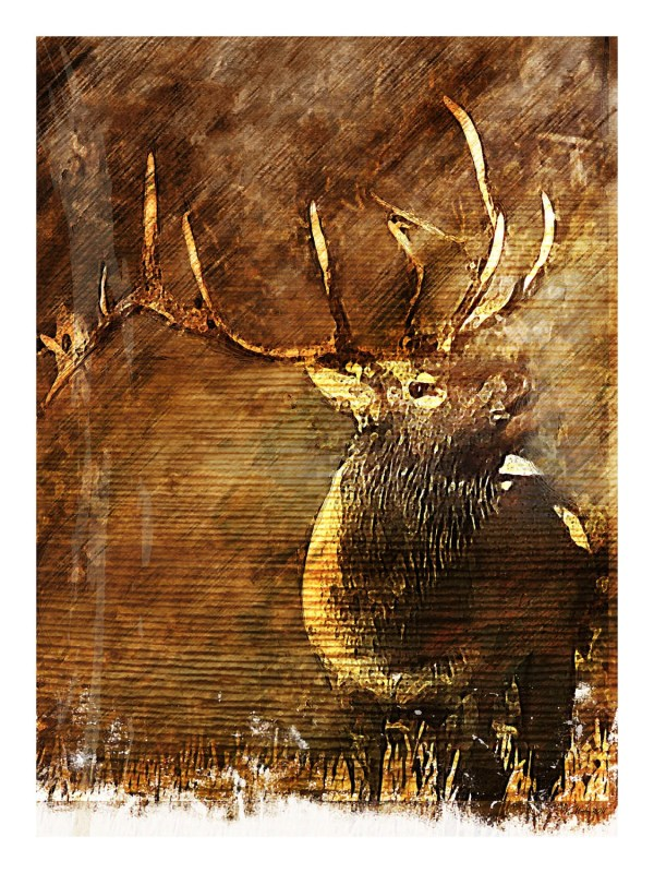 Abstract Rustic Elk Fine Art Painting Bull