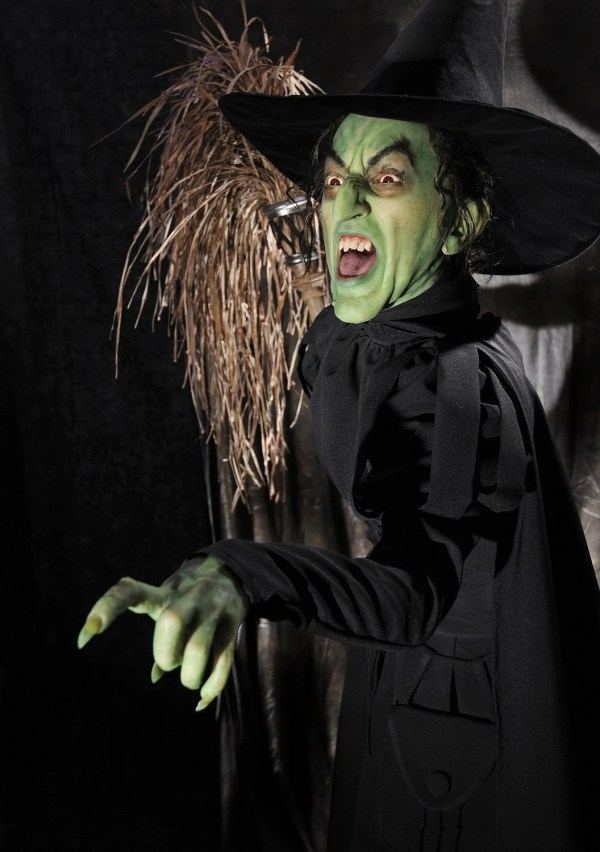 Wicked Witch Of West Custom Costume