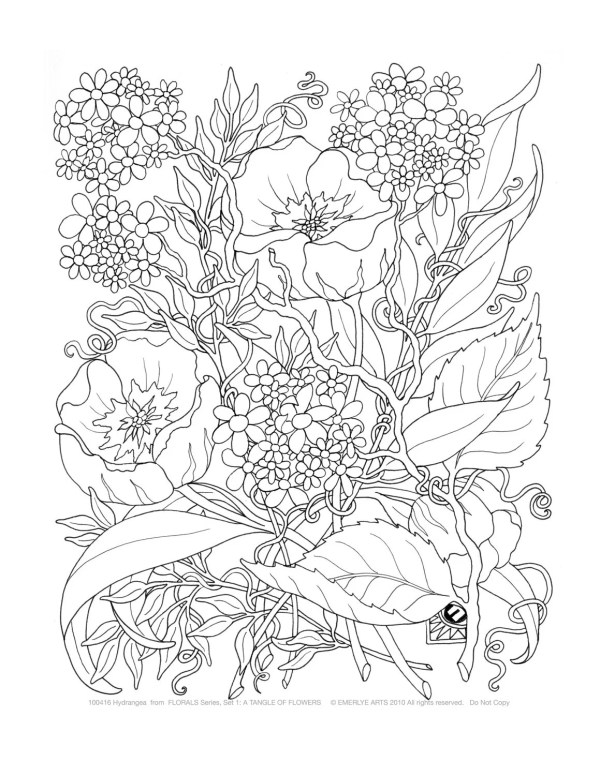 adult coloring tangle of flowers