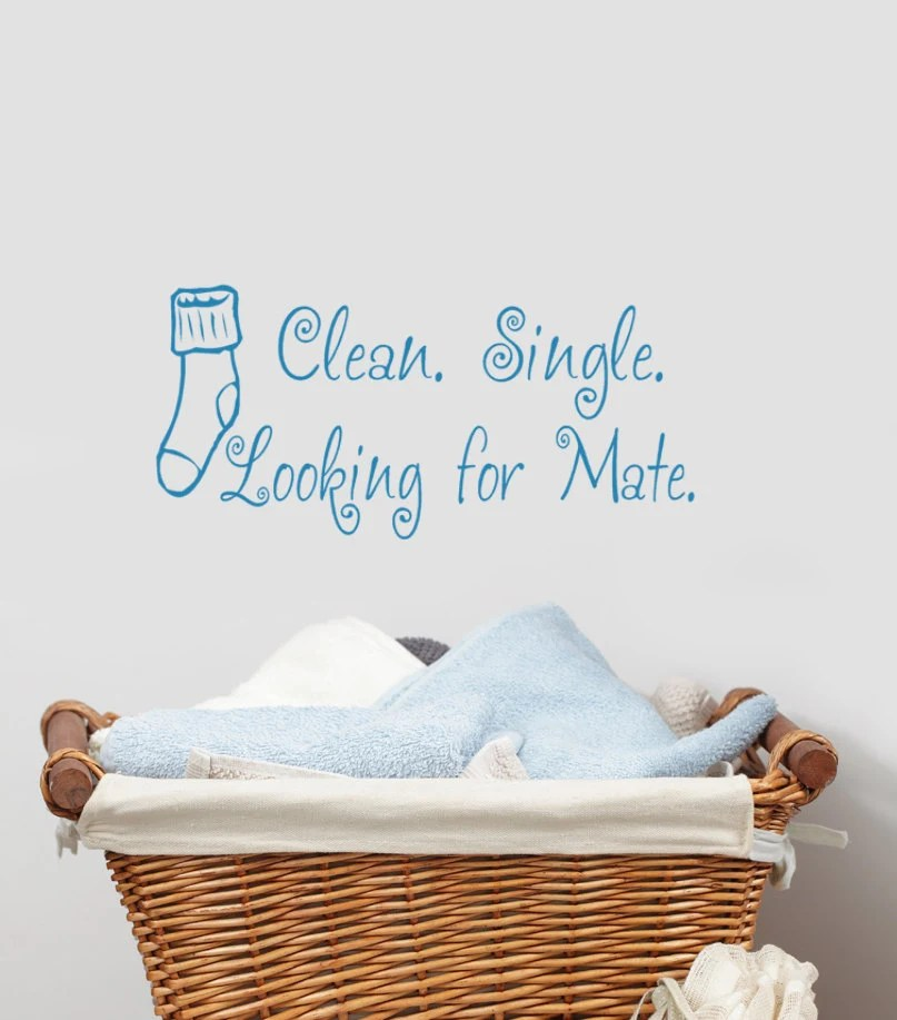 Clean Single Looking for Mate Laundry decor decal Missing