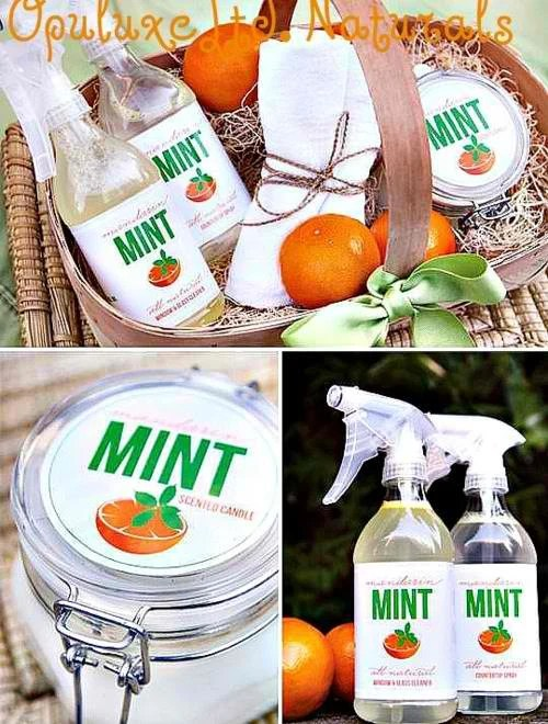 OpuluxeLtd. Italian Orange and Mint: Eco Cleansing Set