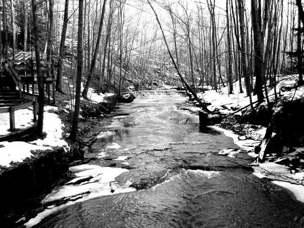 Winter Stream 8x10 Black And White Museum Quality