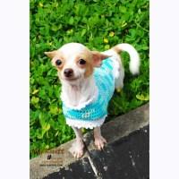 Cute Dog Coats Teacup Chihuahua Clothes Yorkie Dachshund
