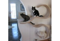 Wall-mounted cat shelf the DOUBLE WAVE.