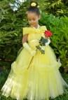 Princess Belle Tutu Costume