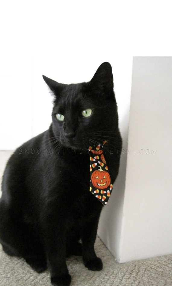Halloween Cat Tie - I Want Candy - SnoopCattyCatt