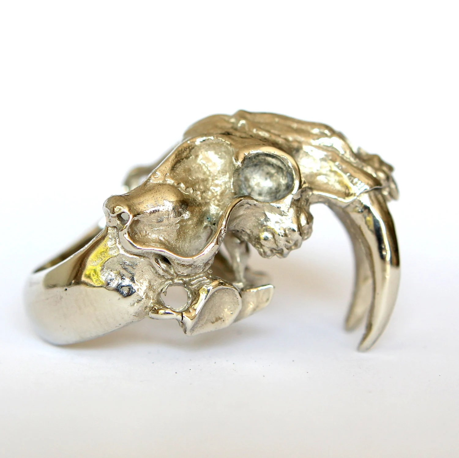 Saber Tooth Cat Skull Ring in Solid White Bronze Smilodon