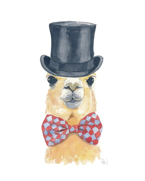 20 Llama In A Hat Pictures And Ideas On Meta Networks
