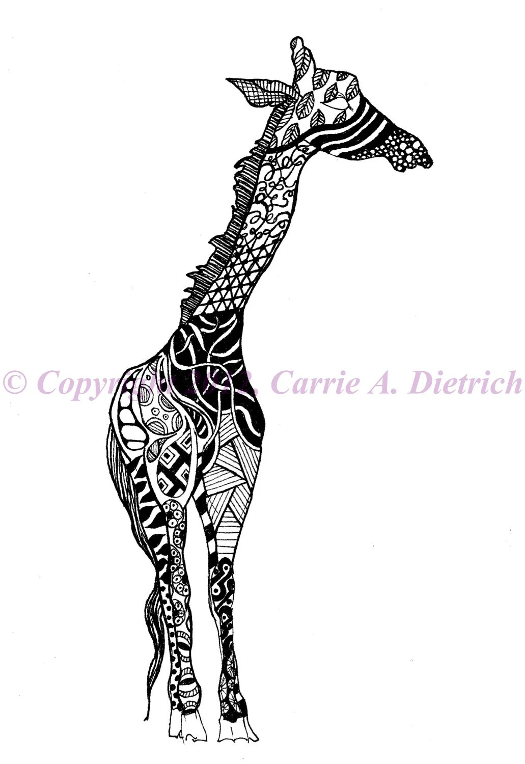 Giraffe Art Giraffe Drawing Pen and Ink by CreationsByCarrieD