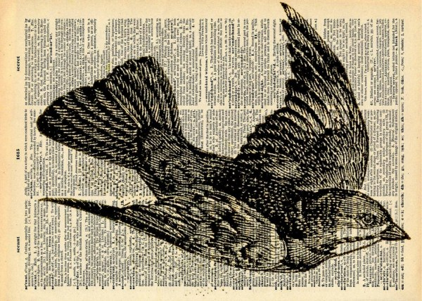 Vintage Bird Print Recycled Antique Book Art Natural